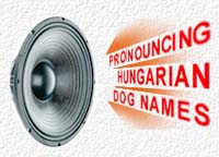 How to pronounce Hungarian dog names